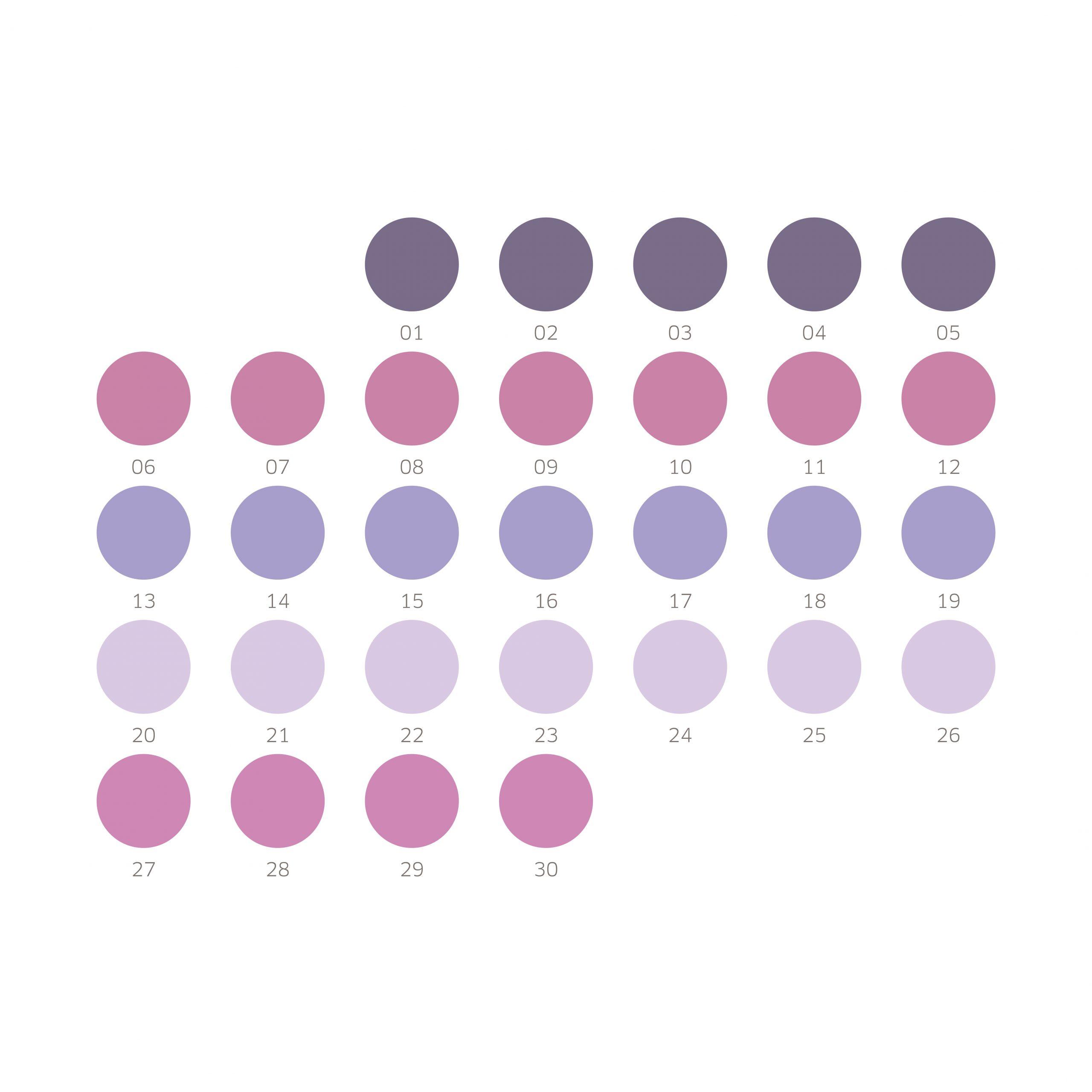 marise knegtmans . calendar . design concept